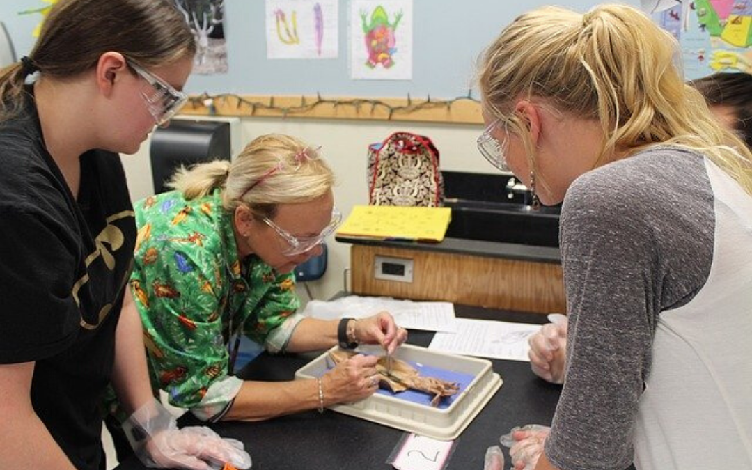 9 Critical Problems Faced by Science Teachers You Need to Know