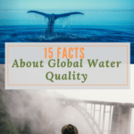 15 Facts about Global Water Quality