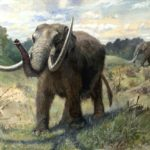 Mastodons of Berengia
