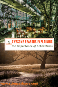 5 Awesome Reasons Explaining the Importance of Arboretums - https://sciencealcove.com/2015/04/five-reasons-arboretums-important/