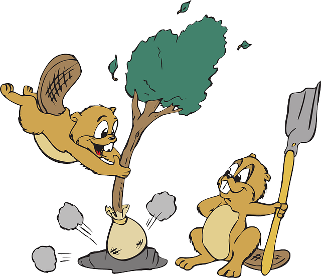 https//pixabay.com/en/animals-tree-shovel-hole-dirt-46210/