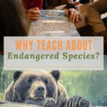 Why Teach about Endangered Species?