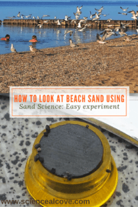 How to Look at Beach Sand using Sand Science- Easy experiment - https://sciencealcove.com/2015/08/what-is-beach-sand-made-of/