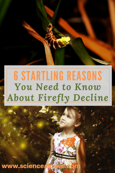6 Startling Reasons You Need to Know about Firefly Decline