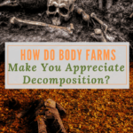 How Do Body Farms Make You Appreciate Decomposition?