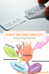 Actually, What Makes Things Alive- -Easy Experiment - https://sciencealcove.com/2016/09/what-makes-things-alive/