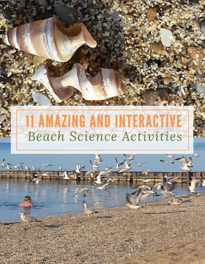 11 Amazing and Interactive Beach Science Activities - https://sciencealcove.com/2017/07/beach-science-activities/
