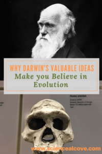 Why Darwin's Valuable Ideas Make you Believe in Evolution-https://sciencealcove.com/2018/02/darwins-ideas-make-you-believe-in-evolution/