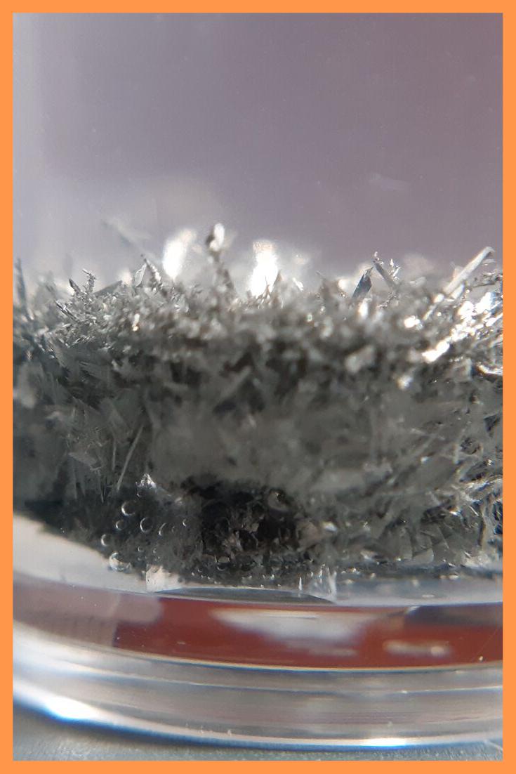 Close up of Tin Hedgehog