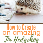 How to Create an amazing Tin Hedgehog with Mel Science