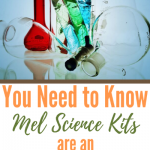 You Need to Know Mel Science Kits are an Awesome Investment
