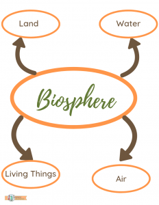 systems in science: Biosphere system and subsystems