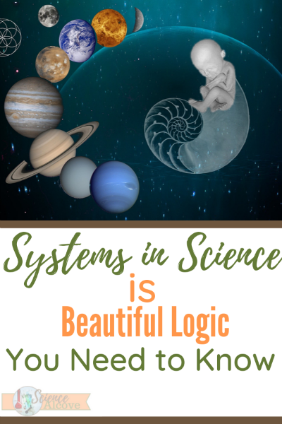Systems in science are important. Organization is important in science and, to be honest, in most aspects of your life. Its how you make sense of the world.