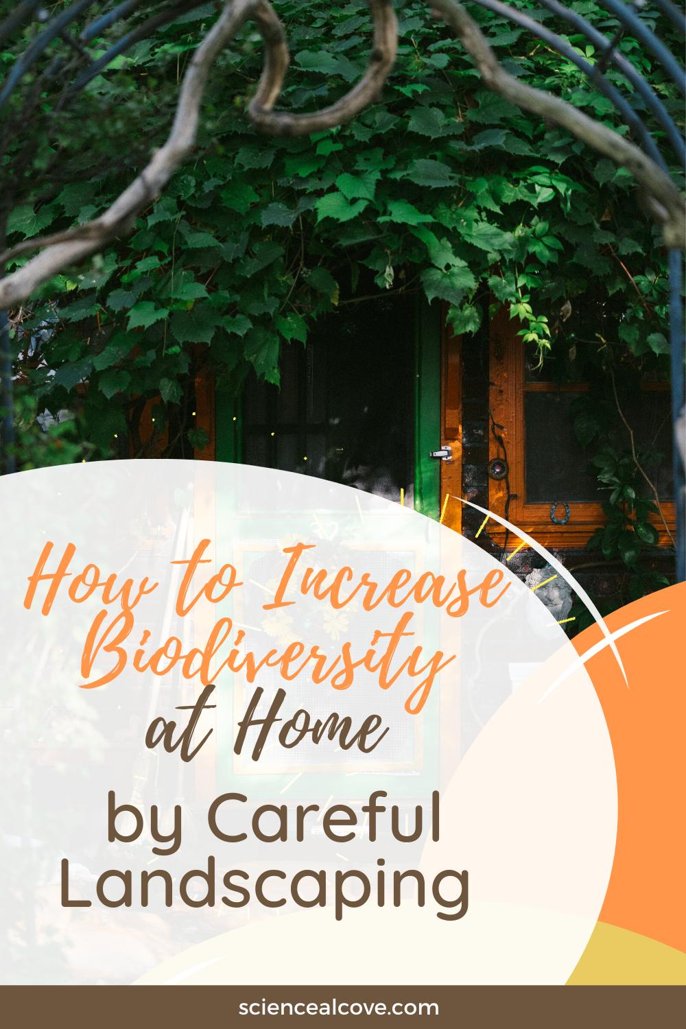 how to increase biodiversity at home